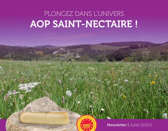 Plongez dans l'univers AOP Saint-Nectaire ! - Newsletter Juillet 2019