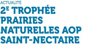 Actualité - 2e trophée prairies naturelles AOP Saint-Nectaire