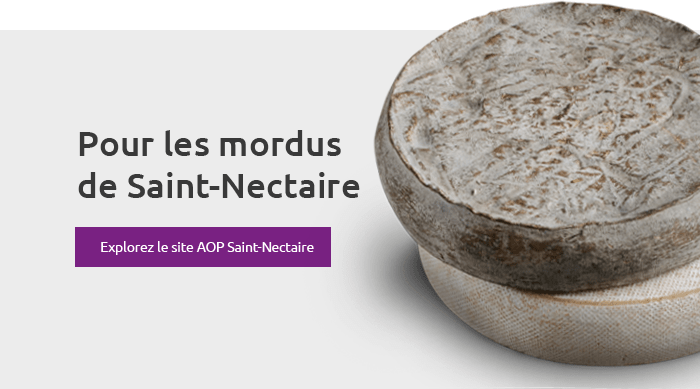 Pour les mordus de Saint-Nectaire - Explorez le site AOP Saint-Nectaire